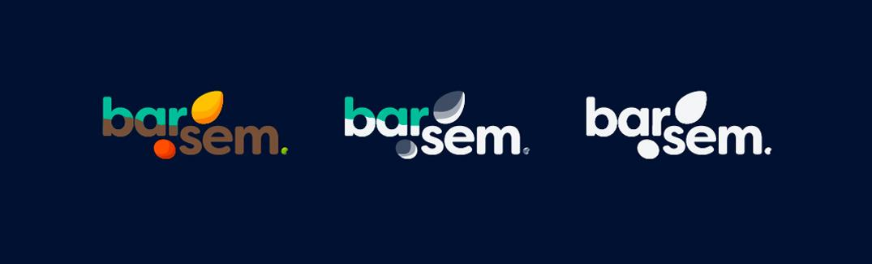 Barsem_Logo_03