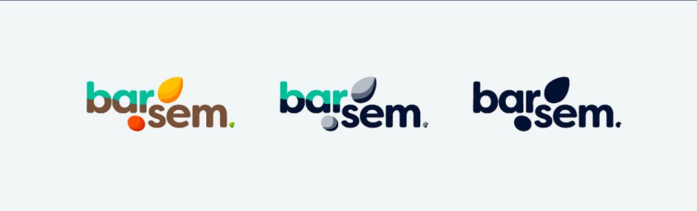 Barsem_Logo_04